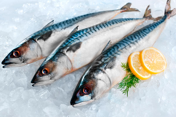 """Минимальные розничные цены на рыбу зафиксированы в магазине """"Русский Невод"""""""