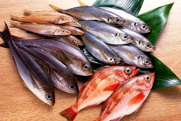 Липецк Рыба предлагает рыбу оптом в широком ассортименте